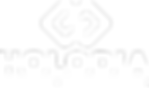 holodia_logo_top_white_transparentbg@102