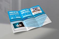 Insurance Brochure Back