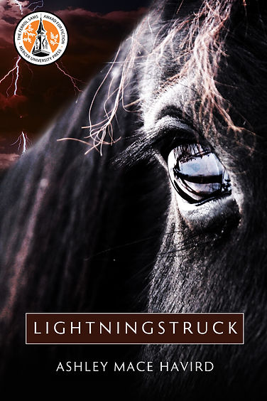 Lightningstruck, A Novel by Ashley Mace Havird. Set during the Civil Rights Era in the South.