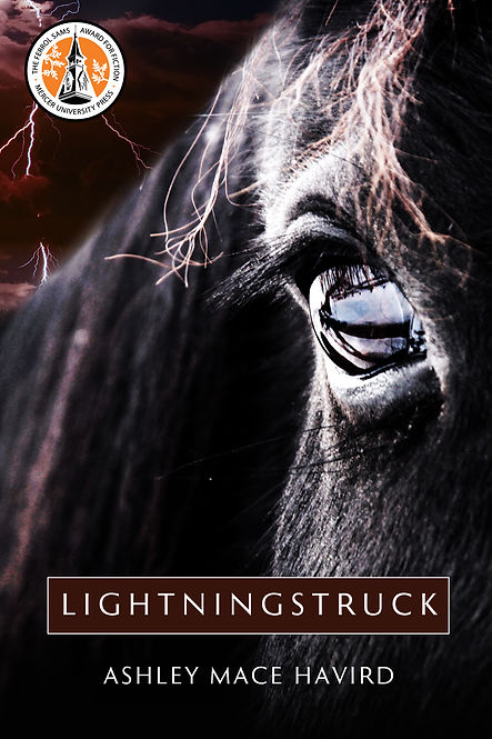 Lightningstruck: A Novel. Winner 2015 Ferrol Sams Award for Fiction. by Ashley Mace Havird