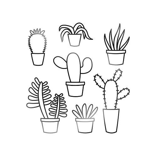 Succulents Decal