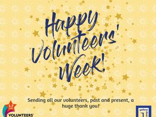 Volunteering at Yellow Door - Volunteers Week 2020