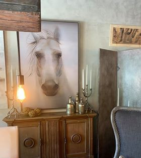 Horse 2020.jpg