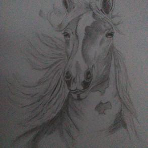 cheval raphaelle.jpg