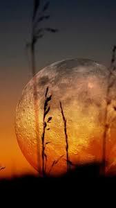 Pleine Lune du 09 Mars 2020 en Vierge à 18h48