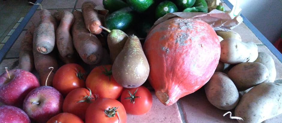 Se régaler avec de bons Fruits et Légumes Bio