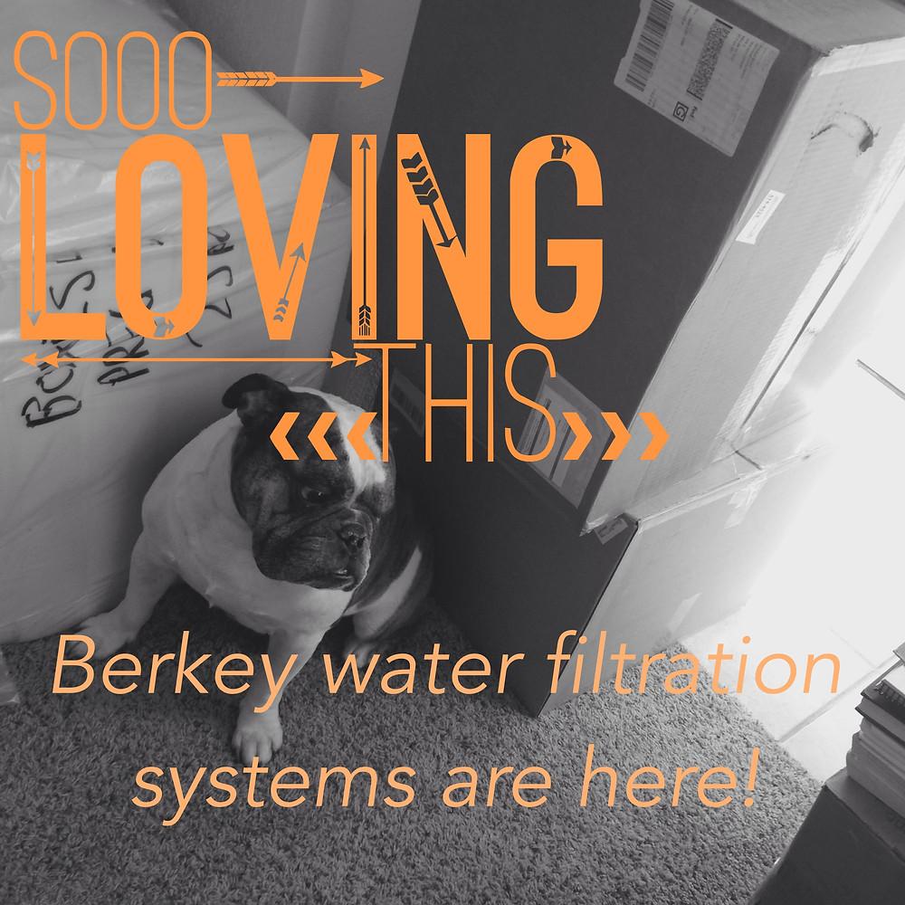 Berkey Water at Optimized Living Institute