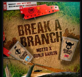 break a branch.jpg