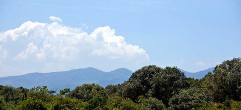Udsigt fra farmen mod Ngong Hills.