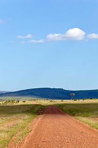 safari0290.jpg