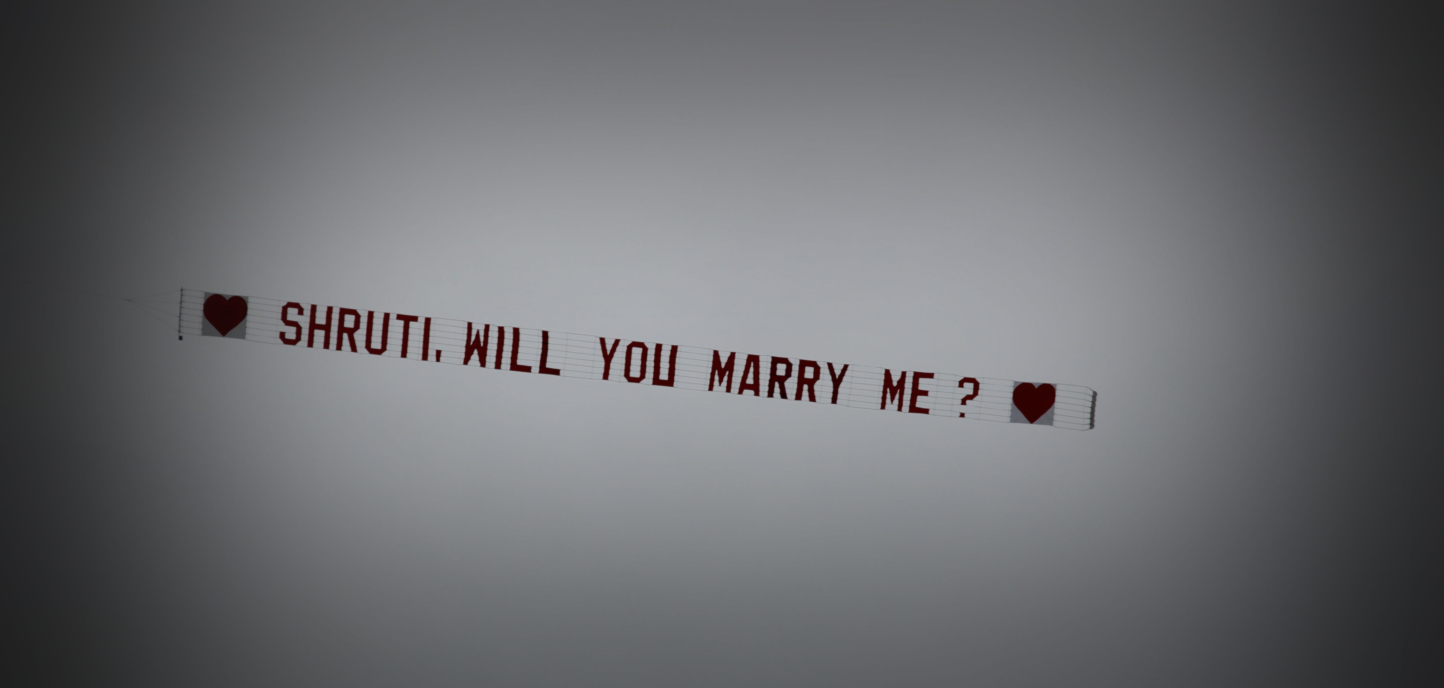 Ariel will you marry me banner