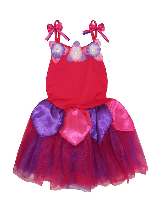 Pretty Purple and Red Fairy Dress