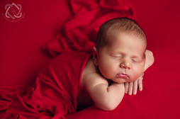 Baby Fotograf Zürich