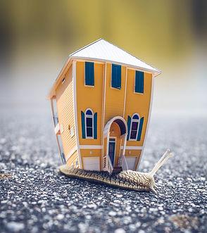house risk.jpg