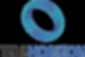 Telehorizon logo_LinkedIn.png