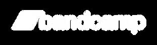 bandcamp-logotype-light-512.png