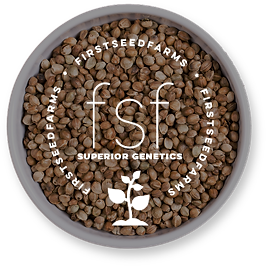 FSF SEEDS.png