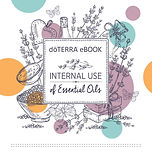 internal use ebook.JPG