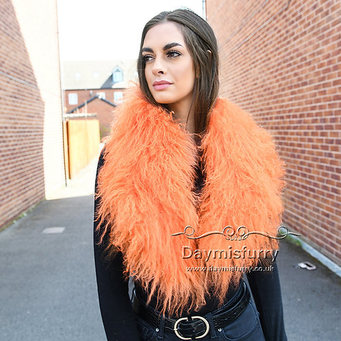 DAA52 Detachable Mongolia Lamb Fur Collar / Fur Scarf