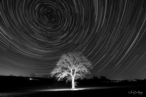 star trails 5 bw