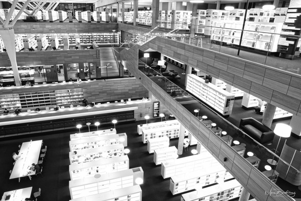 National Library bw #15