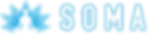 soma_logo_blue_white_internet.png
