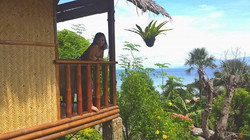 coco-hut-view.jpg