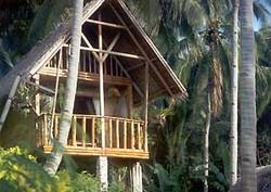 Coco-Beach_banana-house.jpg