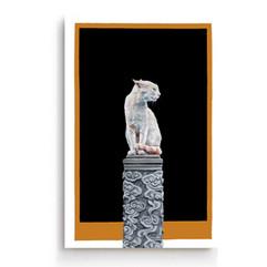O gato e o templo galeria.jpg