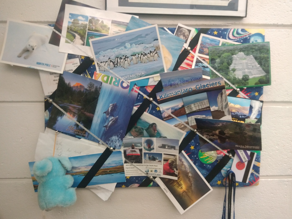 Postcards from a penguin