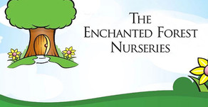 Apiary-backed Bertram acquires Enchanted Forest