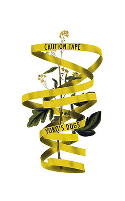 caution-tape.jpg