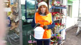 Volunteering for Millvale Animal Sanctuary