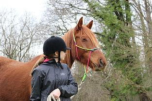 relation-au-cheval.JPG