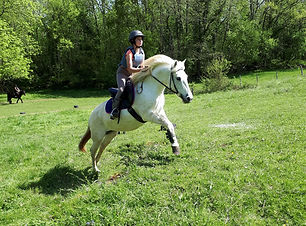 equitation-pleine-nature.jpg