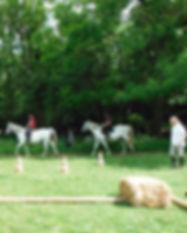 cours_equitation-pleine-nature.jpg