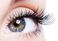 Wimpers Haarlem Amsterdam Lashes