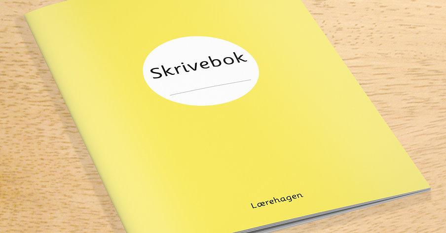 Skrivebok-linjer og blanke sider. 10 stk.