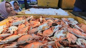 Sarana Produksi dan Logistik Menjadi Kendala Dalam Sektor Perikanan