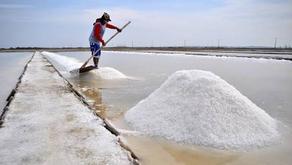 10 Daerah Penghasil Garam Terbesar di Indonesia
