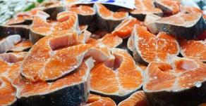 Studi Baru, Virus Corona Dapat Bertahan pada Salmon Beku