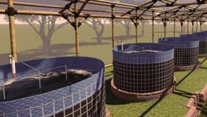Alat Analisis yang Dibutuhkan Kolam Bioflok