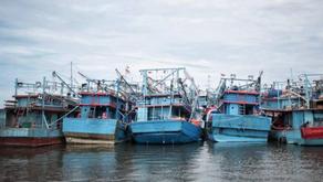 Pertama di ASEAN, RI Terapkan Pendataan Perikanan Elektronik