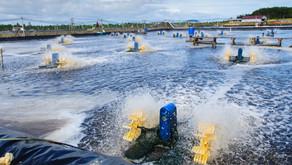 Inovasi Baru yang Dipercaya Mampu Kurangi Biaya Listrik Kincir Air Tambak