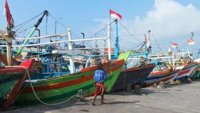 Ekonomi Perikanan Capai USD 20 Miliar, Indonesia Masih Butuh Banyak Kapal Ikan