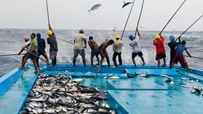 KKP Umumkan 5 Program Perikanan Tangkap Untuk 5 Tahun ke Depan