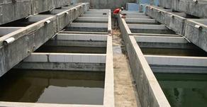 Menghilangkan Bau Semen Pada Kolam Lele Beton