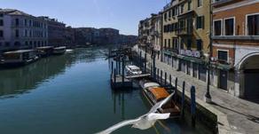 Sepi Karena Corona, Ikan di Kanal Venesia Mulai Bermunculan