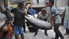 Tahun 2019, KKP Targetkan Ekspor Perikanan Hingga USD 9,5 Miliar