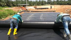 Manfaat Geomembrane pada Tambak Udang